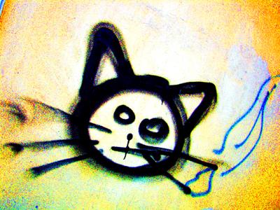 cat (foto by Lady)