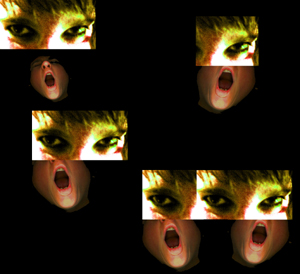 collage by Lady photo by smith xerox by lady