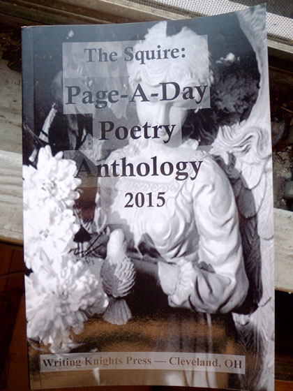 pageaday2015