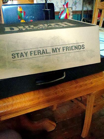 stayferal